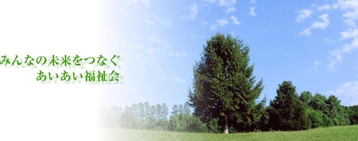 森の風景画像